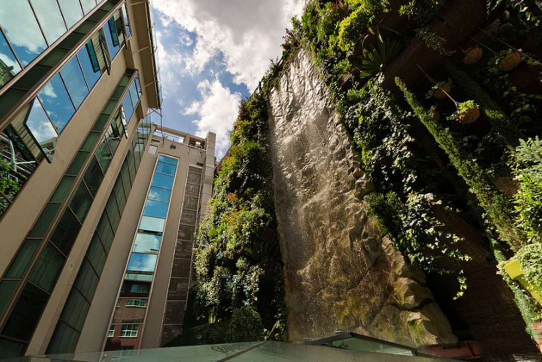 Reach For The Sky Vertical Gardens Around The World Bld